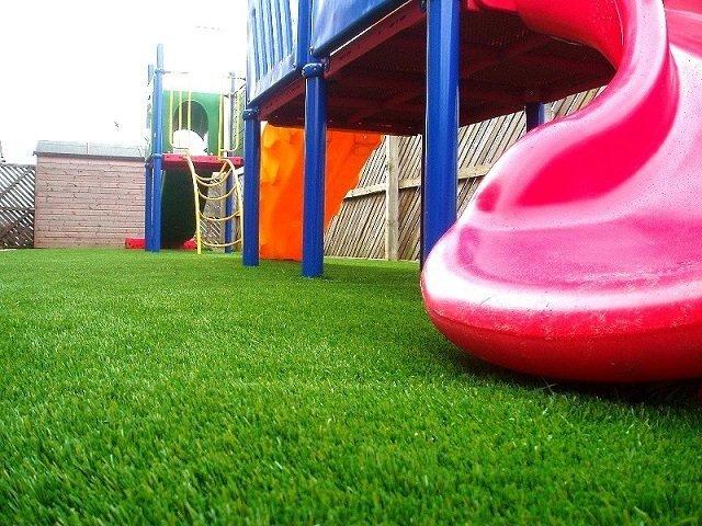 Как выбрать газонную траву для дачи — ТОП-5 лучших и рекомендации по выбору